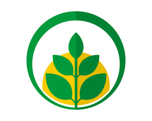 circle green leaf plants icon image vector