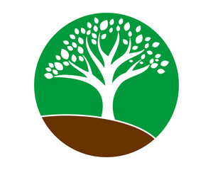 circle plant trees silhouette icon image vector