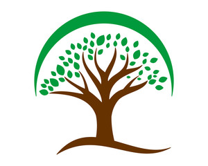 plant trees silhouette icon image vector