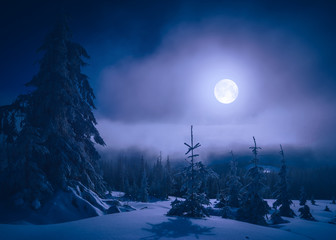 Bright moonlight in a mountain valley
