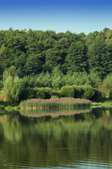 landscape nature pond