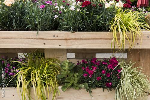 Vertikaler Garten für draußen und drinnen, Balkon, Landhausstil ...