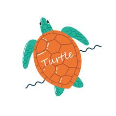 Turtle Swimming Illustration