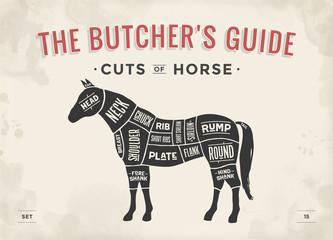 Cut of meat set. Poster Butcher diagram, scheme - Horse. Vintage typographic hand-drawn horse silhouette for butcher shop, restaurant menu, graphic design. Meat theme. Vector Illustration