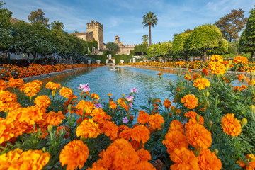 Wall Mural - Blooming gardens and fountains of Alcazar de los Reyes Cristianos, royal palace of the cristian kings, in Cordoba, Andalusia, Spain