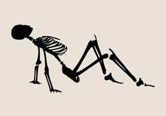 Human skeleton posing. Vector illustration. Halloween party design template