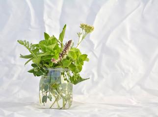 Wall Mural - Fresh herbs in the glass