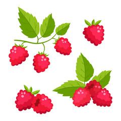 Set of cartoon raspberry with green leaves isolated on white