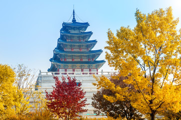 Wall Mural - Autumn in Gyeongbokgung Palace, Seoul in South Korea.