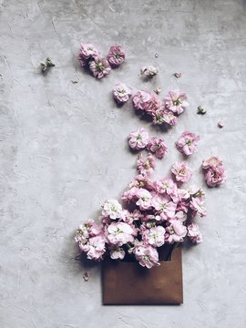 Pink flowers spilling out of an envelope