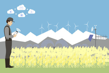 Wall Mural - Internet of things in agriculture. Smart farm for growing wheat with wireless control.  Vector illustration.