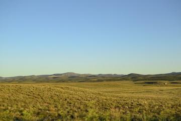Field in Arizona