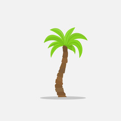 Palm trees in cartoon style isolated on white background Vector Illustration. Tropical summer tree plant on nature for your projects.