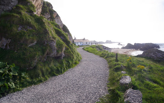 Path leading to houses in Ballintoy Harbour