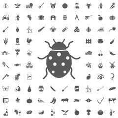Ladybug icon.