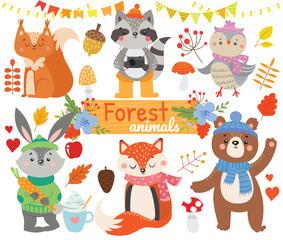 Set of forest  animals. Autumn.Vector illustration