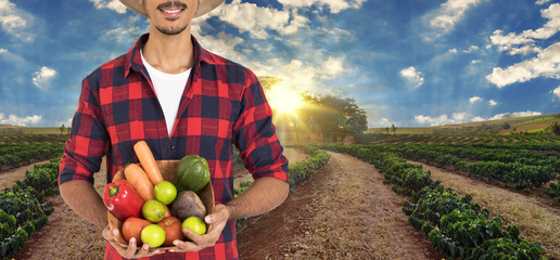 Midsection of farmer holding a basket of vegetables (carrot, lemon, tomatoes, chayote and beet) on field. Concept Image.