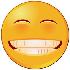 Grin emoji vector image