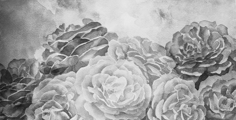 black and white roses in hand painted watercolor background design, romantic mood for wedding announcement or valentines day