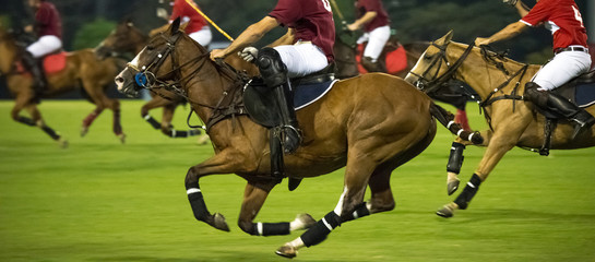 Horses Running In a Night Polo Game