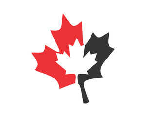 silhouette canada maple leaf icon image vector
