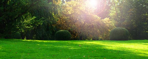 Staande foto Tuin Herbst, Herbststimmung