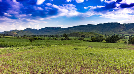 wide landscape view of green farm and mountains