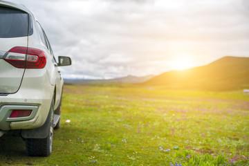 Car on the grassland