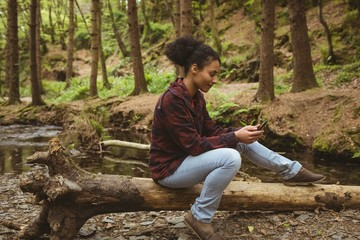 Woman using phone while sitting on fallen tree at forest