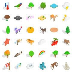 Jungle icons set, isometric style