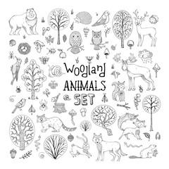 Vector doodles woodland animals set.