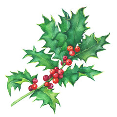Holly twig (Ilex, Christ's thorn) with leaves and berries. Christmas decoration for greeting card, invitation. Noel, New Year. Watercolor hand drawn painting illustration isolated on white background.