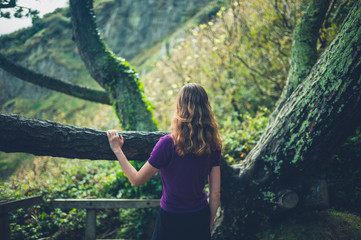 Woman by tree admiring nature