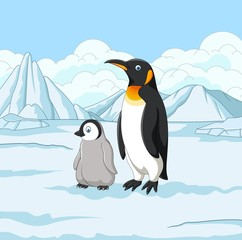 Cartoon mother and baby penguin on snowy field