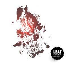 Vector design template. Ink splashes element leaf print. Hand made Ink stamp of a leaf. Seasons changing.