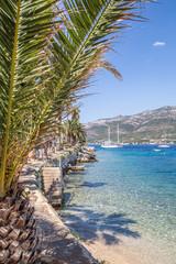 Widok z pod palmy, wakacje, Chorwacja, wyspa Korcula
