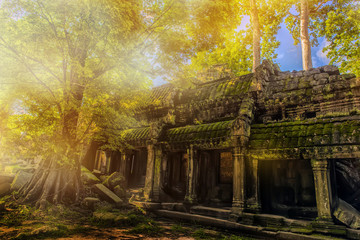 Ta Prohm temple in the rays of the sun