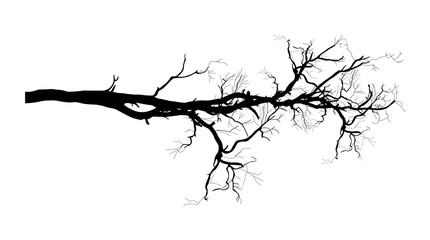 Dry Tree Branch Vector Shape Design