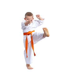 With orange belt boy beats kicking