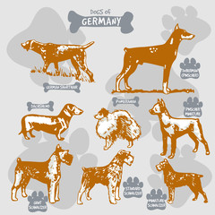Dogs breeds of the world vector draw and shilouette on isolated illustration by countries with names, Germany 2