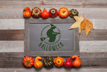 Pumpkins on wooden background. Halloween. Autumn concept