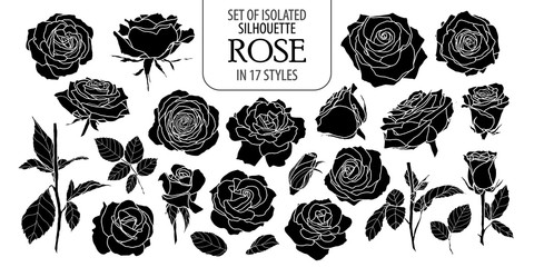 Set of isolated rose in 17 styles. Cute flower illustration in hand drawn style. Silhouette on white background.