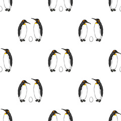 Vector seamless pattern of bird penguin couple with egg. Emperor penguin family