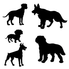 Black silhouette of dogs (Dachshund, Dalmatian, Doberman Pinscher, German Shepherd, Saint Bernard) on a white background.