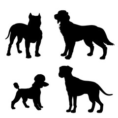 Black silhouette of dogs (Dalmatian, Poodle, Irish Setter, Pitbull) on white background.