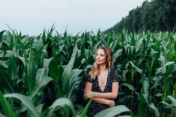 Beautiful girl stands in the field of young corn. Agriculture.