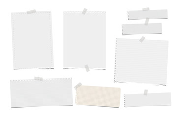 Torn ruled, note, notebook, copybook paper strips, sheets stuck with sticky tape on white background.