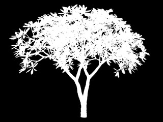 3d rendering of a white abstract tree on a black background
