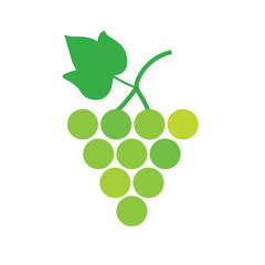 bunch of white wine grapes- vector illustration