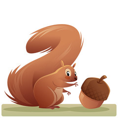 Cartoon squirrel character reaching an acorn isolated vector illustration